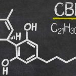 Cannabis compound may offer hope to schizophrenia sufferers